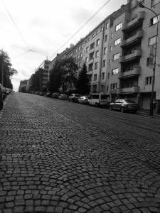 električková ulica smer flora od nás