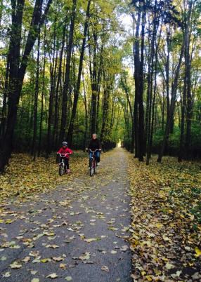 T woods bikes